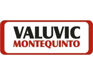 VALUVIC, S.L.